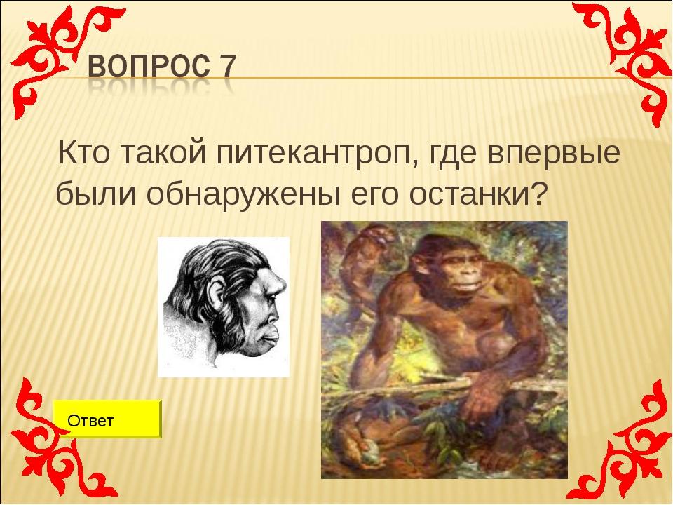 Кто такой питекантроп, где впервые были обнаружены его останки? Ответ