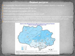 На территории Томской области насчитывается 131023 водных объекта, в том числ