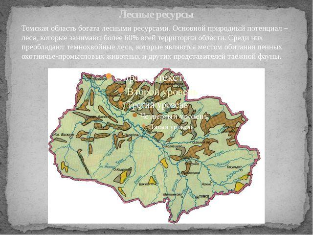 Лесные ресурсы Томская область богата лесными ресурсами. Основной природный п...