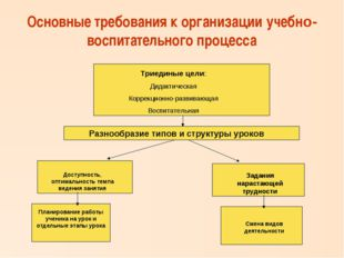 Основные требования к организации учебно-воспитательного процесса Триединые ц