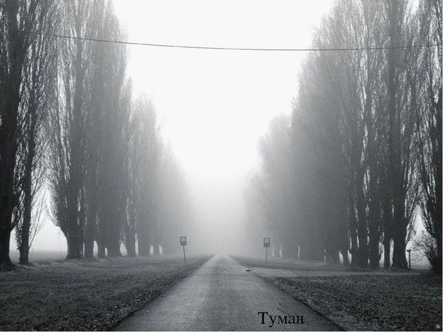 * Туман