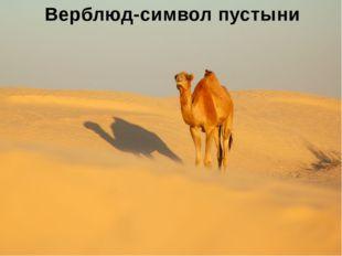 Отчет экс. группы№3 Названиеприродой зоны Тропические пустыни Сахара, Калаха