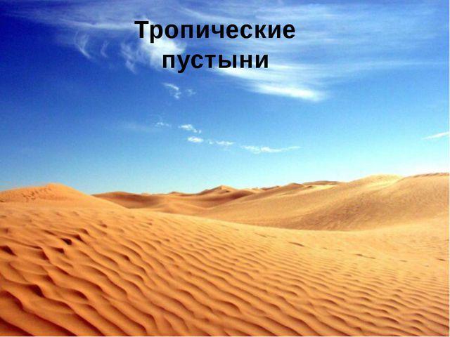 Растения пустыни Верблюжья колючка Алоэ Молочай Вельвичия Финиковая пальма