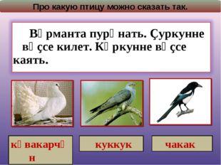 Про какую птицу можно сказать так. кӑвакарчӑн куккук чакак