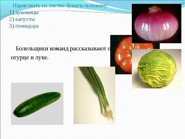 Нарисовать на листке бумаги половину: 1) луковицы 2) капусты 3) помидора Бол...