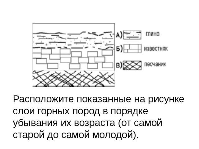 Расположите показанные на рисунке слои горных пород в порядке убывания их во...