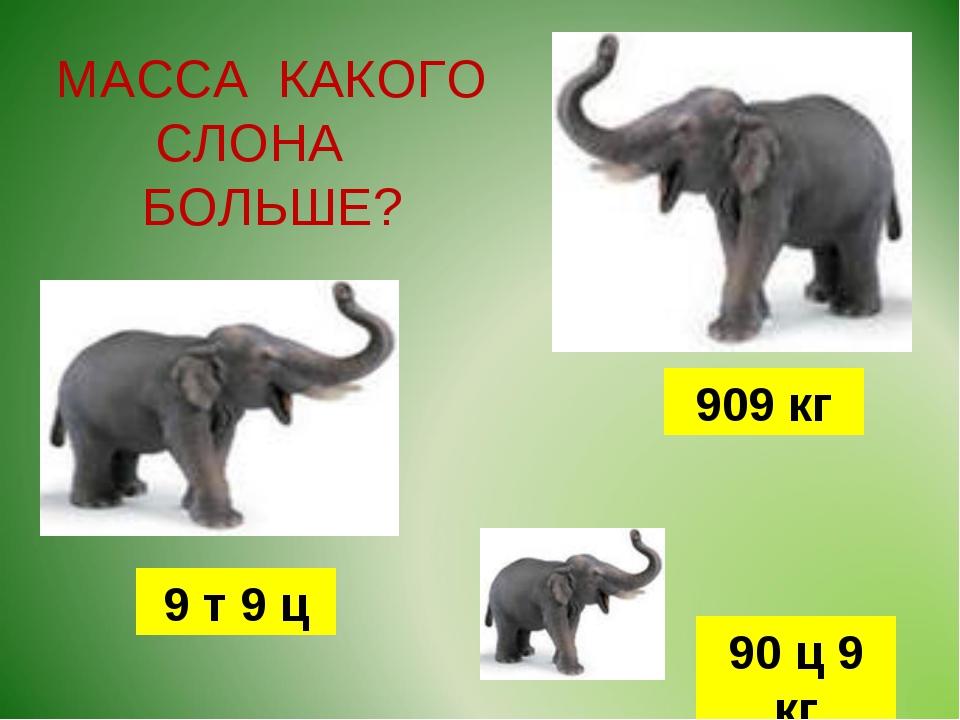 МАССА КАКОГО СЛОНА БОЛЬШЕ? 9 т 9 ц 90 ц 9 кг 909 кг