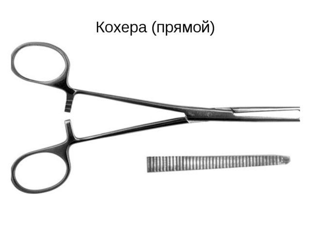 Кохера (прямой)
