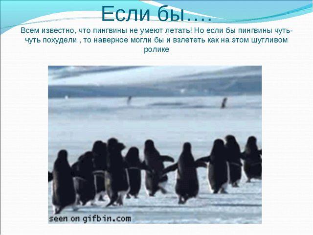 Если бы…. Всем известно, что пингвины не умеют летать! Но если бы пингвины чу...