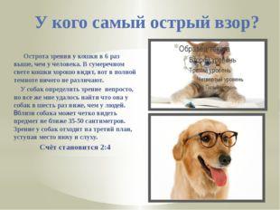 У кого самый острый взор? Острота зрения у кошки в 6 раз выше, чем у человека