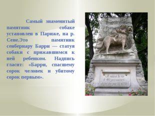 Самый знаменитый памятник собаке установлен в Париже, на р. Сене.Это памятни