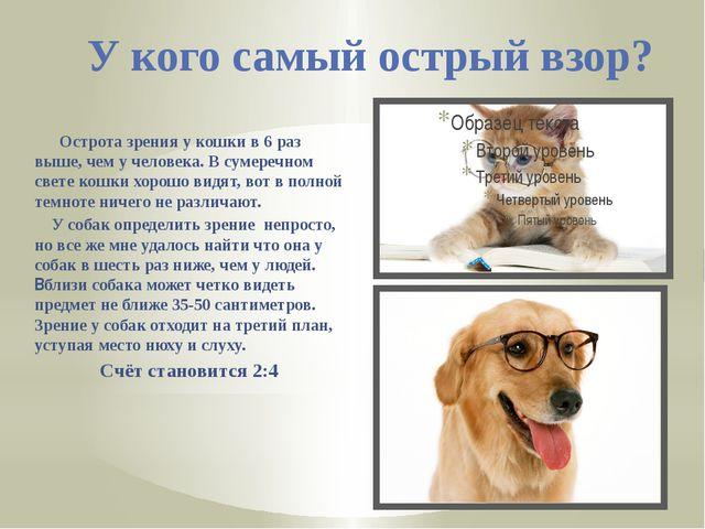 У кого самый острый взор? Острота зрения у кошки в 6 раз выше, чем у человека...