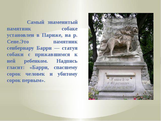 Самый знаменитый памятник собаке установлен в Париже, на р. Сене.Это памятни...