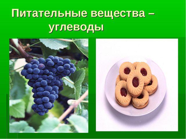 Питательные вещества – углеводы