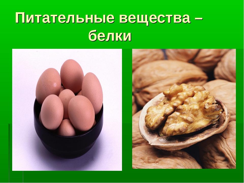 Питательные вещества – белки