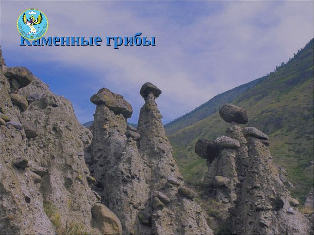 Каменные грибы