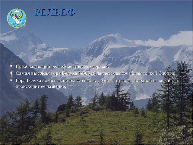 Преобладающий рельеф местности - горный. Самая высокая гора Белуха (4506 м) я...