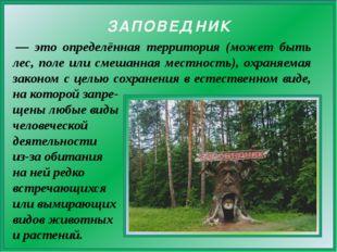 — это определённая территория (может быть лес, поле или смешанная местность)