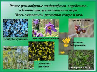 Резкое разнообразие ландшафтов определило и богатство растительного мира. Зде