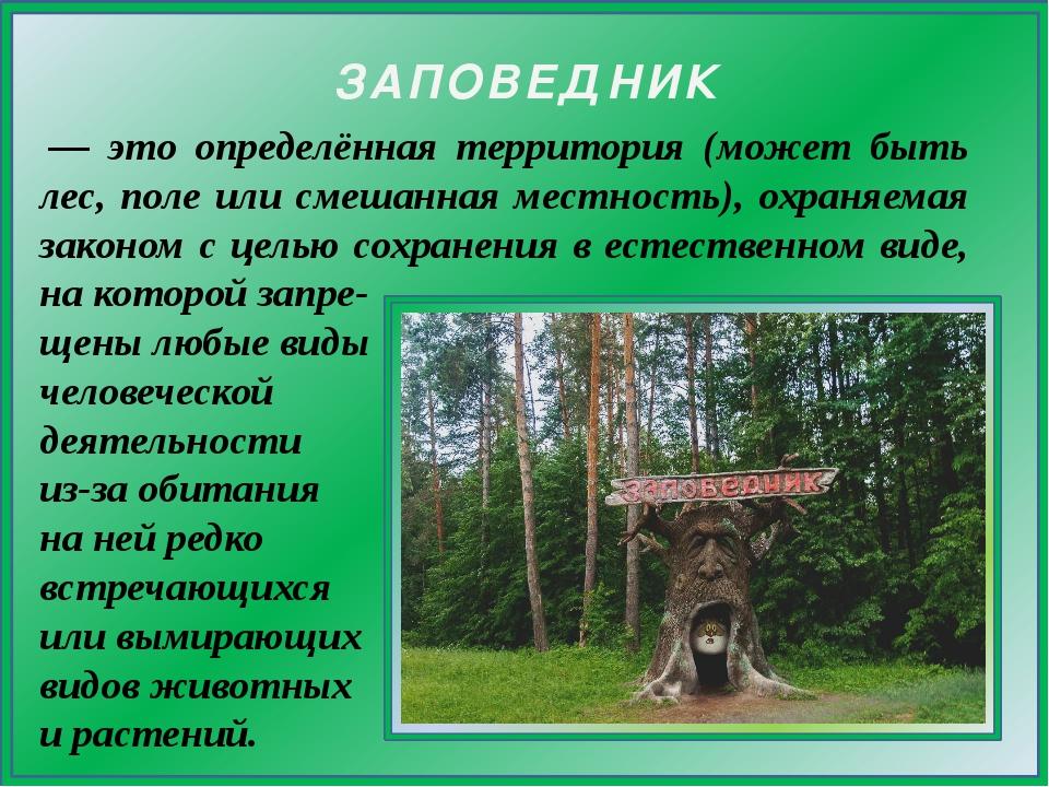 — это определённая территория (может быть лес, поле или смешанная местность)...