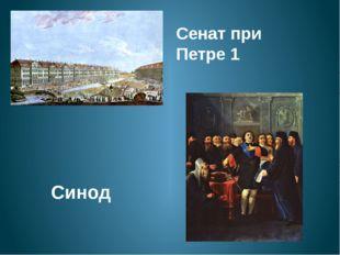 Сенат при Петре 1 Синод