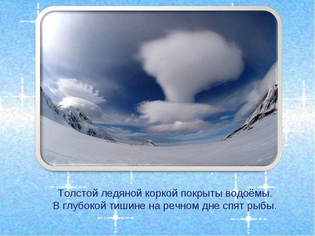Толстой ледяной коркой покрыты водоёмы. В глубокой тишине на речном дне спят...
