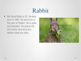 Rabbit My friend Maks is 22. He was born in 1987. He was born in the year of