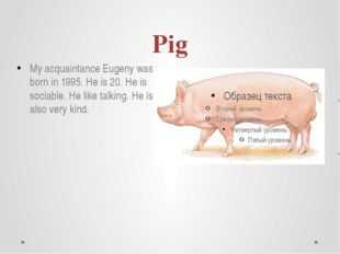 Pig My acquaintance Eugeny was born in 1995. He is 20. He is sociable. He lik