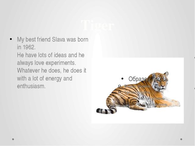 Tiger My best friend Slava was born in 1962. He have lots of ideas and he alw...