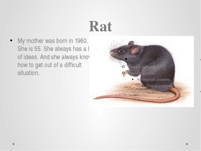 Rat My mother was born in 1960. She is 55. She always has a lot of ideas. And...