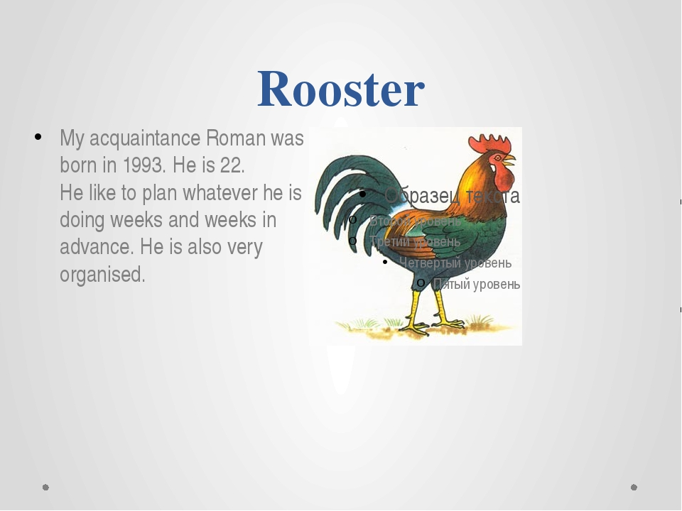 Rooster My acquaintance Roman was born in 1993. He is 22. He like to plan wha...