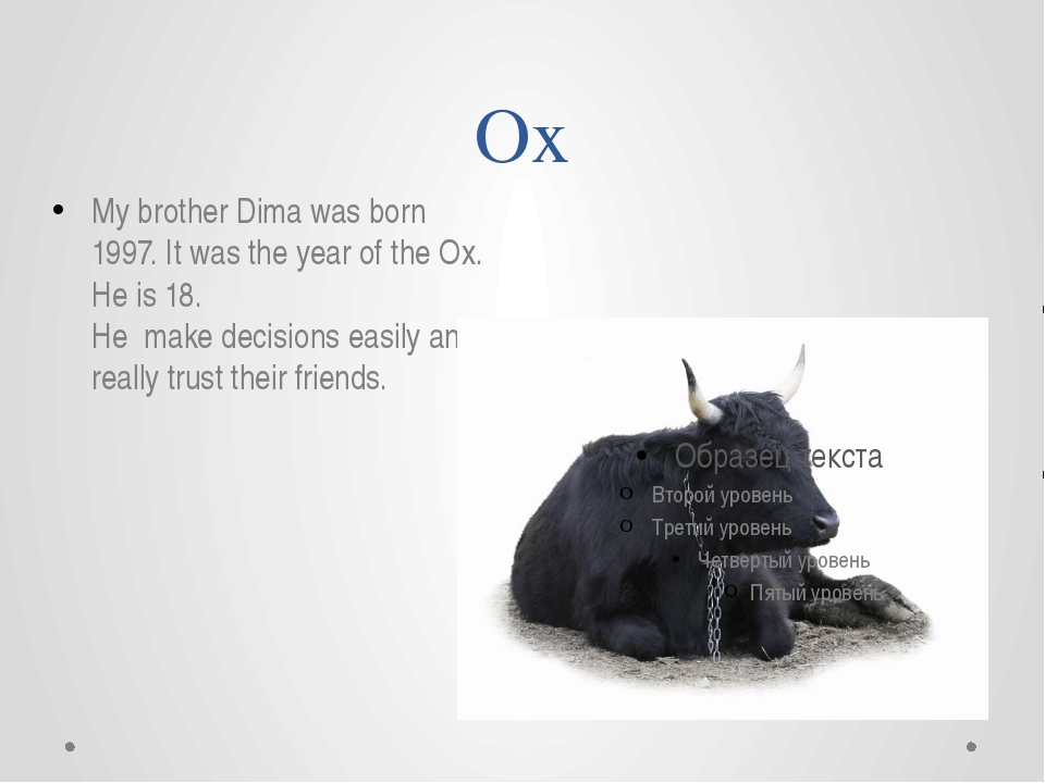 Ox My brother Dima was born 1997. It was the year of the Ox. He is 18. He mak...