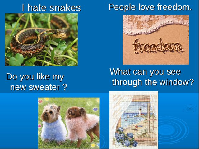 I hate snakes People love freedom. What can you see through the window? Do yo...