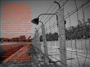 KZ Dachau - первый концентрационный лагерь в фашистской Германии, создан в 19