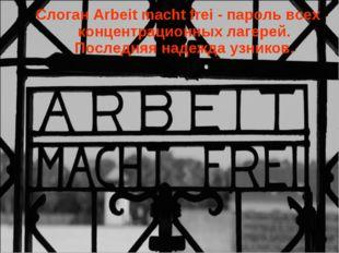 Слоган Arbeit macht frei - пароль всех концентрационных лагерей. Последняя на