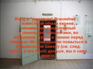 """Вход в """"душевую"""" Brausebad - известный обман евреев, специально придуманный """""""