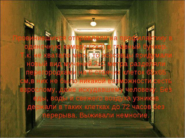 Провинившихся отправляли на профилактику в одиночную камеру (2х2) в главный б...