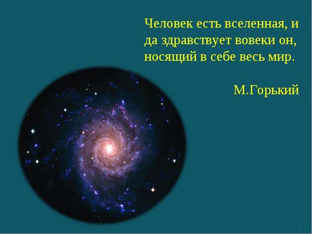 * Человек естьвселенная, и да здравствует вовеки он, носящий в себе весь мир...