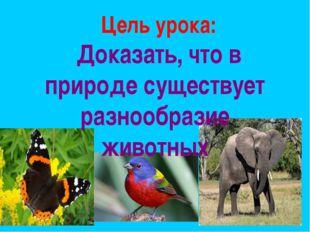 Цель урока: Доказать, что в природе существует разнообразие животных