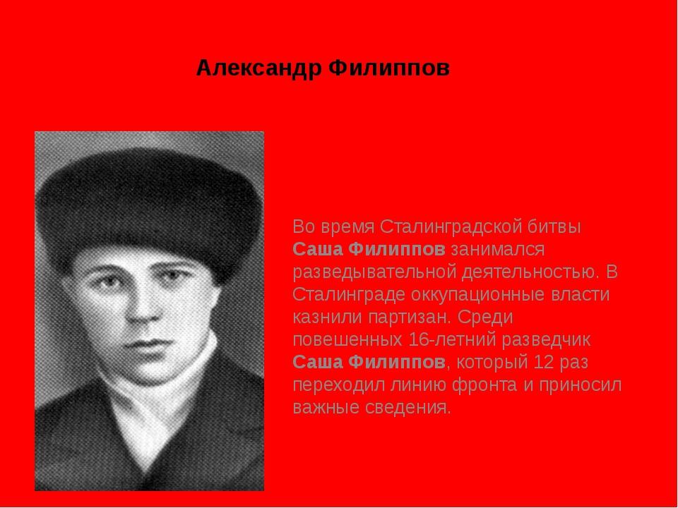 Александр Филиппов Во время Сталинградской битвы Саша Филиппов занимался разв...