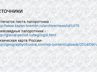 Источники Отпечаток листа папоротника - http://www.kazan-kremlin.ru/archive/n