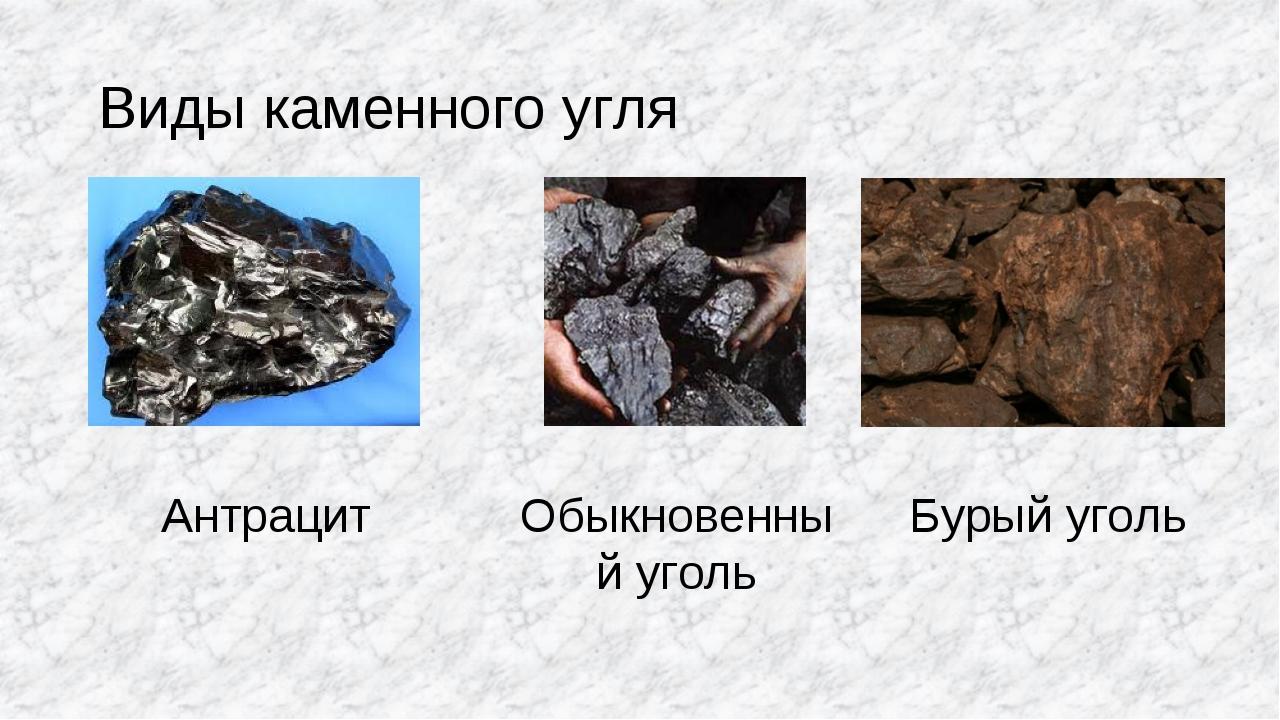 Виды каменного угля Антрацит Обыкновенный уголь Бурый уголь