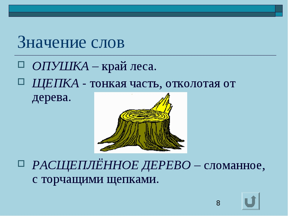 Значение слов ОПУШКА – край леса. ЩЕПКА - тонкая часть, отколотая от дерева....