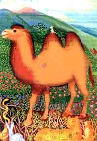 http://djangar.bumbinorn.ru/images/camel.jpg