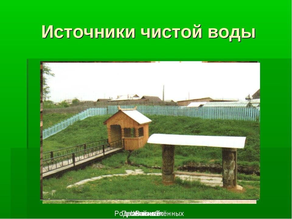 Источники чистой воды Пробойный Шакыш Родник влюблённых Василёк