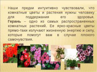 Наши предки интуитивно чувствовали, что комнатные цветы и растения нужны чело