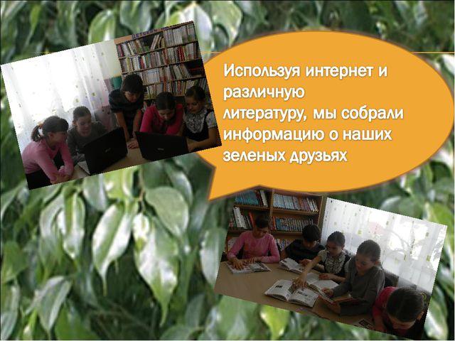 Детский исследовательский проект