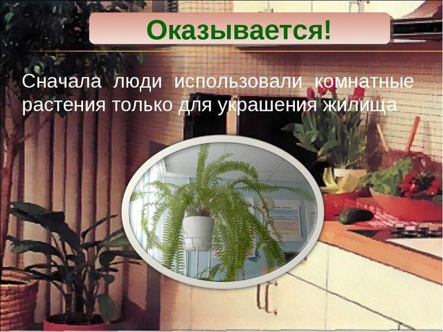 Сначала люди использовали комнатные растения только для украшения жилища Оказ...