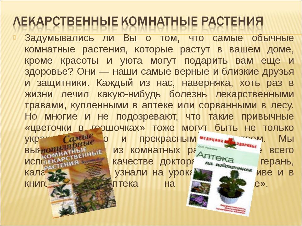 Задумывались ли Вы о том, что самые обычные комнатные растения, которые расту...