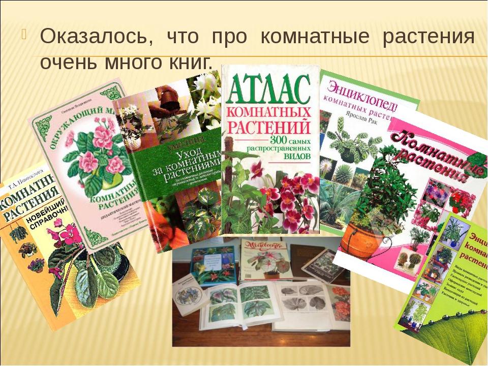 Оказалось, что про комнатные растения очень много книг. Детский исследователь...